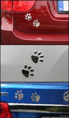Paw Prints on vehicle