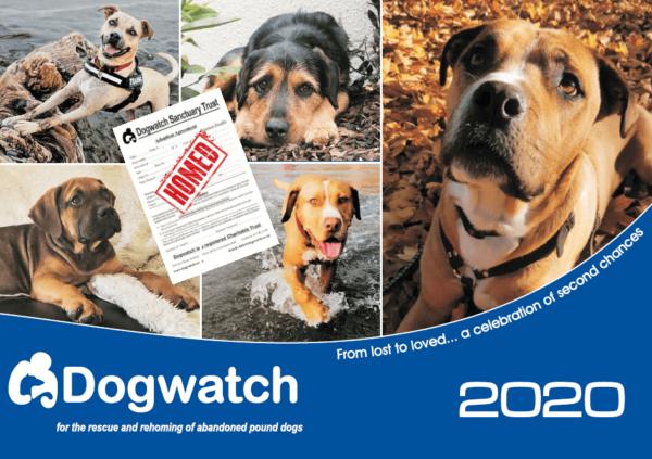 2020 Dogwatch calendar front cover