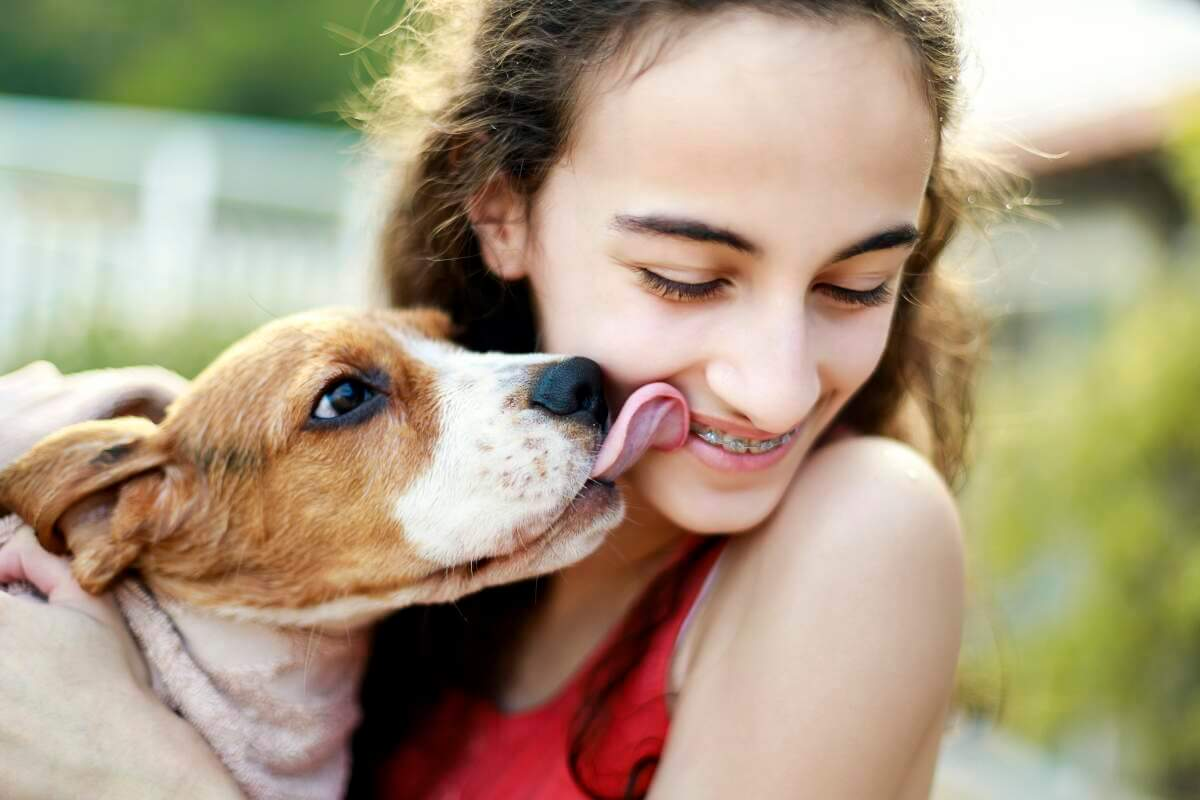 Girl being licked by tan and white puppy