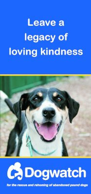 Leave a legacy of loving kindness brochure